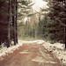 Maine by Alexandra Roberts