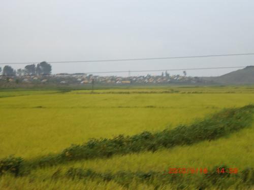 northkorea northkorea9142010