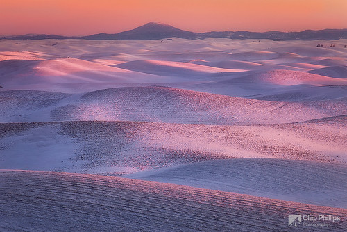 Palouse Winter Pastels