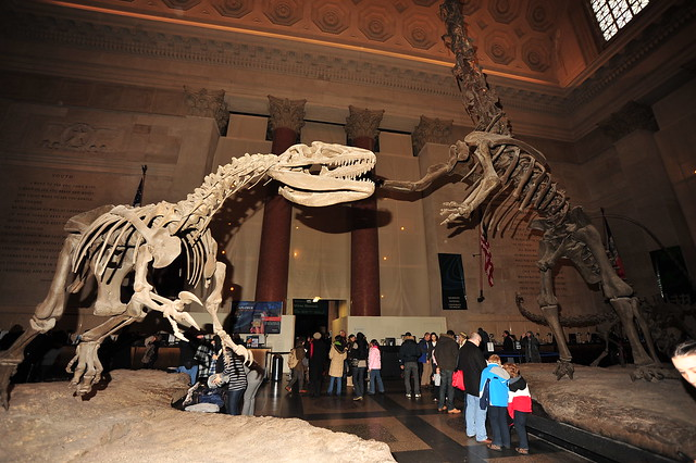Theodore Roosevelt Rotunda / American Museum of Natural History - Central Park West, Manhattan NYC - 01/07/11