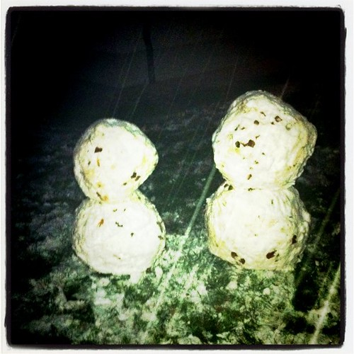 Makin's of a snow couple