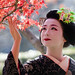 December letters #6, Maiko (apprentice geisha) and autumn leaves