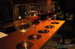 Tasting Flight at Vines of Mendoza - Mendoza, Argentina