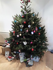 wreath(0.0), decor(1.0), branch(1.0), tree(1.0), christmas decoration(1.0), christmas tree(1.0), christmas(1.0), twig(1.0),