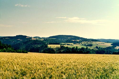 Aussicht Frankenwald im Sommer - Analog fotografiert