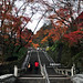 清水寺| Kiyomizu Dera