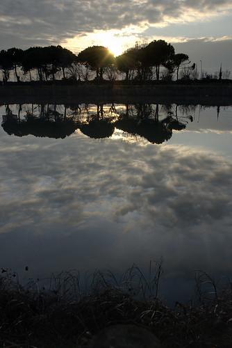 trees sunset sky sun lake water alberi clouds lago mirror tramonto nuvole explore exposition multiple sole acqua specchio blending esposizione cervia multipla