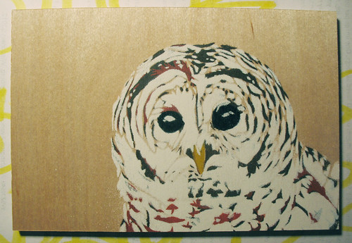 barred owl - finished stecnil painting