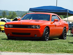 exif dodge challenger srt8 with viper srt10 wheels. Black Bedroom Furniture Sets. Home Design Ideas
