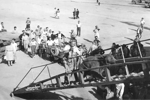 Wojtek embarcando