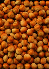 Hazelnuts Fill My Thoughts
