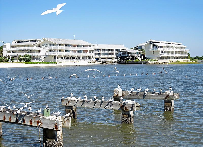 Hotels In Bibione Direkt Am Strand