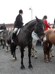Boxing Day Hunt in Tenterden  Dec 2010