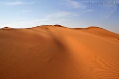 Desert Dunes- Explore Front Page