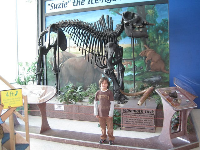 Museum in South Florida – 7 Options