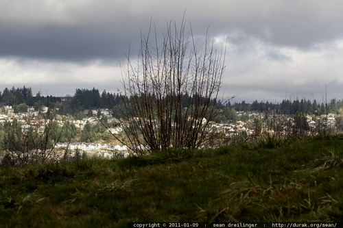 view across the tualatin river valley