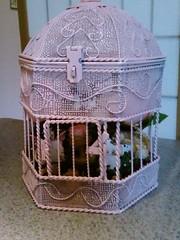 cage, lighting,