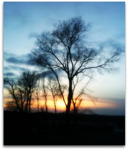 winter sunset sky usa tree tennessee 1001nights soe picnik clarksville skyabove youmademyday abigfave flickrdiamond daimondclassphotographer betterthangood micarttttworldphotographyawards showthebest naturesprime