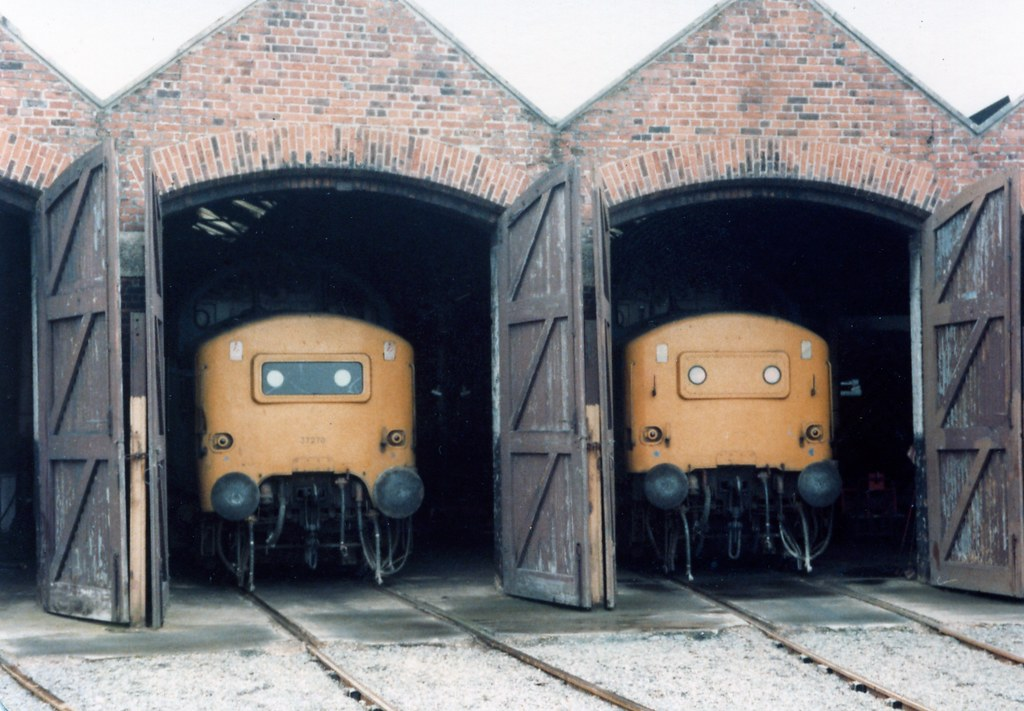 class 37 diesels in St Blazey semi roundhouse, 9/1983 I think.