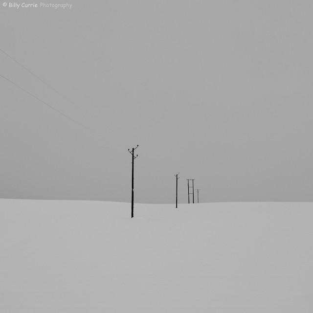Snow Poles