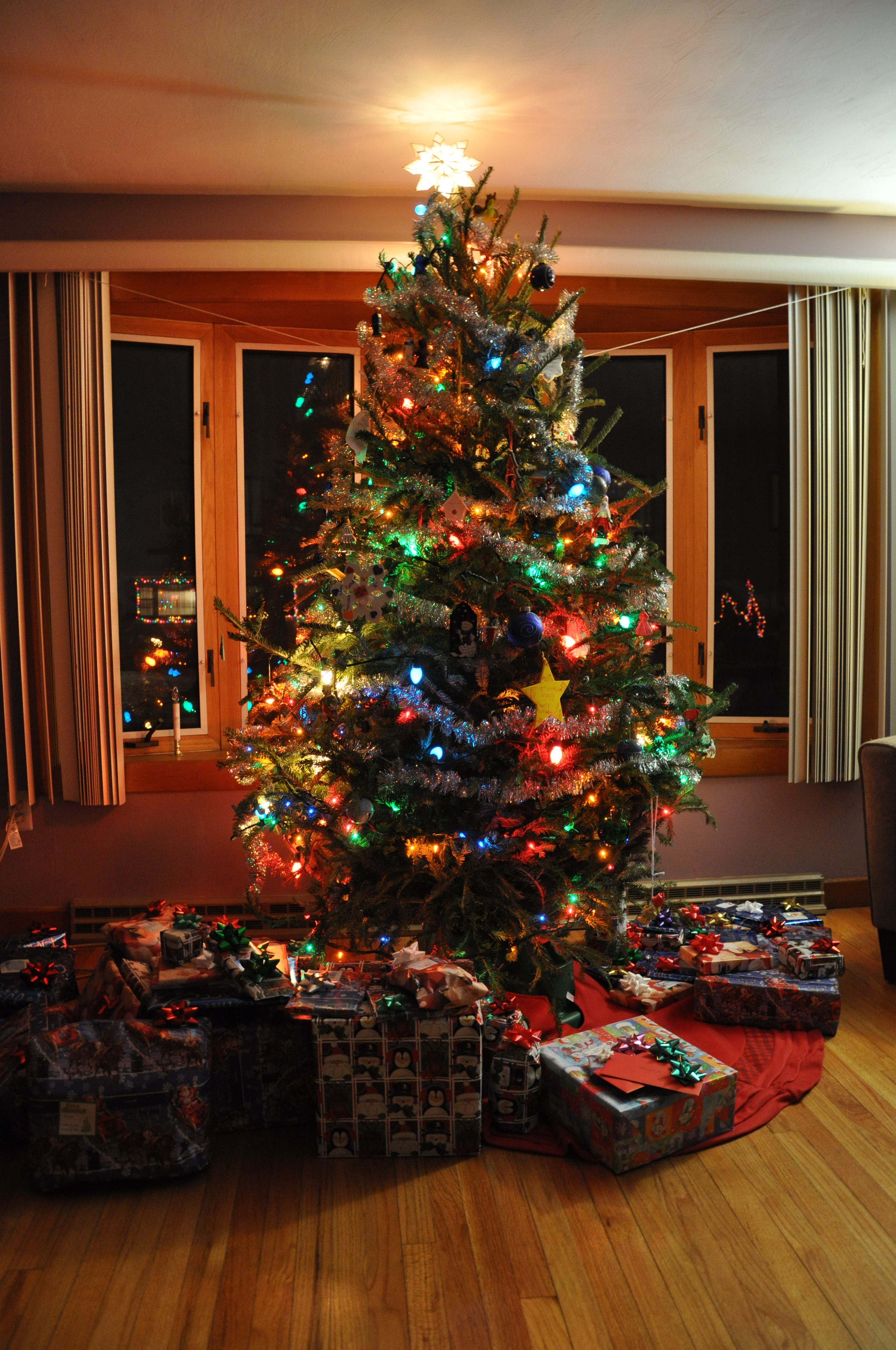 2010-12-24&25 Christmas 003