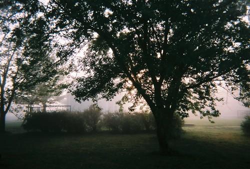 morning fog outdoors kansas