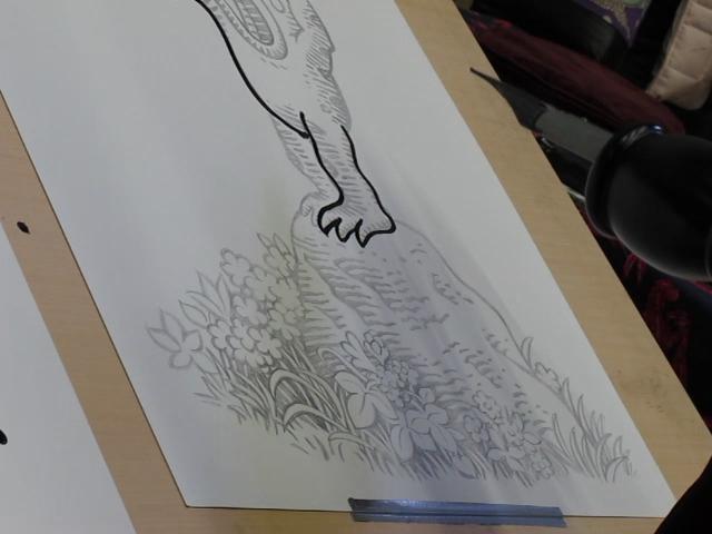 Woodring Draws
