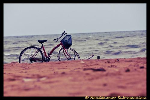 http://www.flickr.com/photos/12664097@N04/5353452745