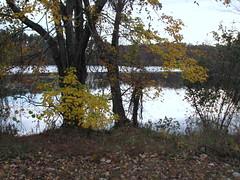 Walnut Creek Lake Raleigh NC 0489