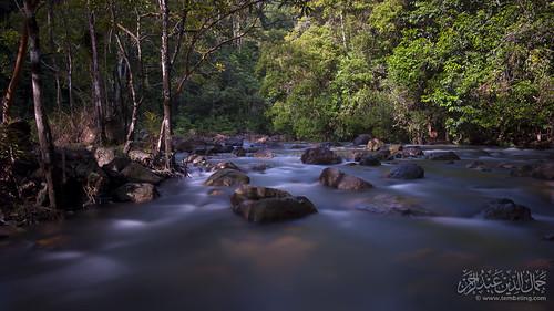 longexposure bw river rainforest stream slowshutter tamannegara endaurompin