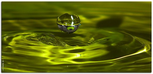 macro green water refraction hs10 hs11 pnsers