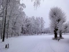 Wallenberg in de sneeuw
