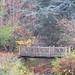 Dry-Creek-2010-12-18