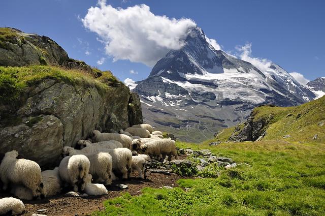 Höhbalmen 2660m, Matterhorn 4478m