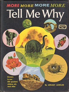 Tell Me Why by Arkady Leokum
