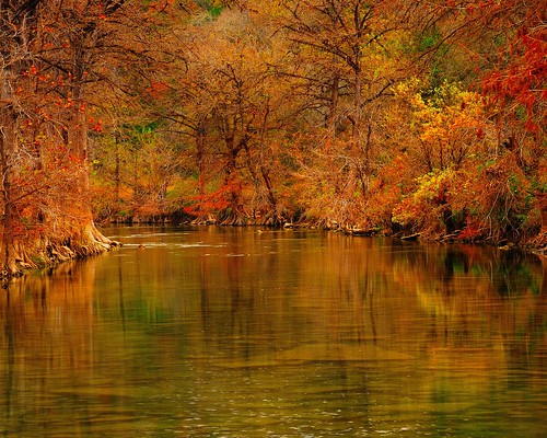 autumn river texas fallcolors cypresstrees blancoriver hayscounty