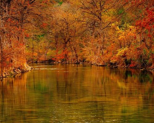 autumn river texas fallcolors cypresstrees blancoriver hayscounty