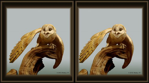 sculpture detail bird art nature stereoscopic stereogram 3d crosseye md gallery brian fine maryland carving indoors stereo owl wallace inside stereopair sidebyside depth easton stereoscopy stereographic ewf freeview brianwallace xview stereoimage xeye stereopicture crosssview