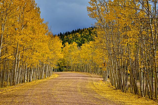 Next 16 Miles: An Ideal Sunday Drive