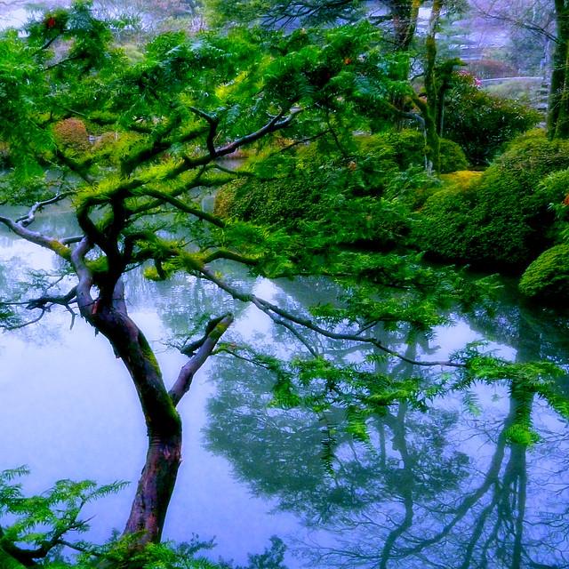 Nikko Japan - Museum Garden (high contrast Ver.)