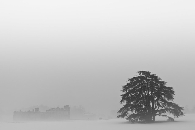 White Out (Leeds Castle), Kent