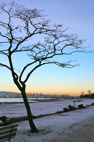 glorious light over wintry Vancouver