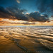 Golden Shores - San Gregorio State Beach, California by Jim Patterson Photography