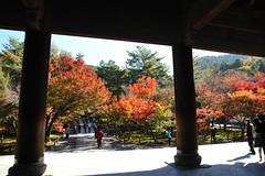 Nanzenji temple 南禅寺