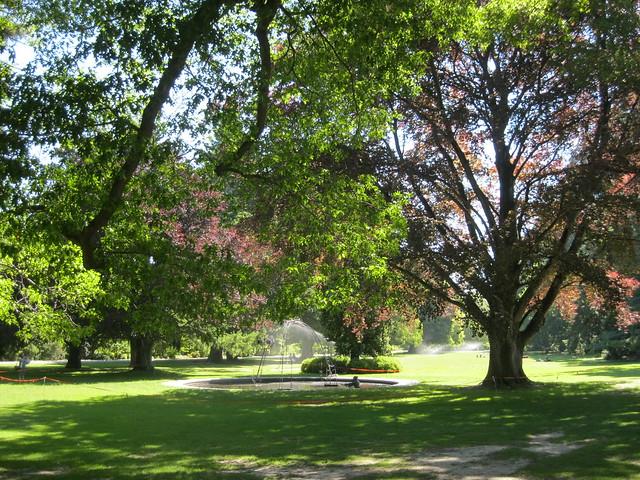 Botanical gardens christchurch flickr photo sharing for Landscape gardeners christchurch