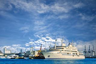 Royal Yacht - Sunflower