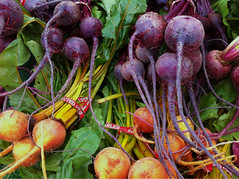 vegetable, produce, food, radish,