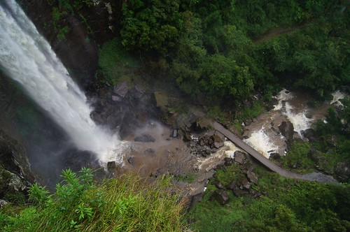 wet water rainforest track flood hiking walk bottom australia waterfalls killarney qld queensland lookingdown compare wetseason queenmaryfalls qldflood