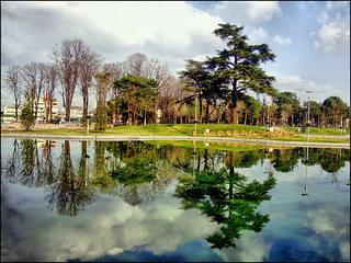 Reflections at park