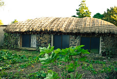 farm(0.0), garden(0.0), yard(0.0), jungle(0.0), thatching(1.0), outdoor structure(1.0), village(1.0), hut(1.0), shack(1.0), cottage(1.0), house(1.0), shed(1.0), rural area(1.0),
